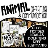 Offspring - Animal Babies and Animal Communication