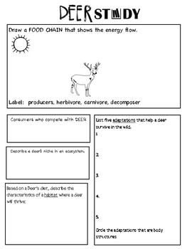 Oh Deer Game/Lesson - Life Science - Fifth Grade