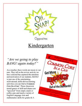 """Oh, Snap!"" Opposites (Antonyms) Kindergarten Common Core Game"
