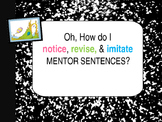 Oh the Places You'll Go Interactive Mentor Sentence Teaching PowerPoint