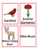 Ohio Bingo Jr.