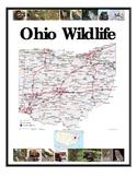Ohio Wildlife and Environments