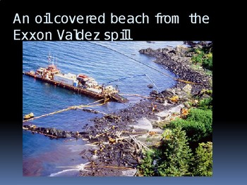 Oil Spill Activity Powerpoint Companion