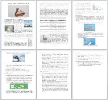 Oil Spills and Their Consequences - Science Reading Article - Grade 8 and Up