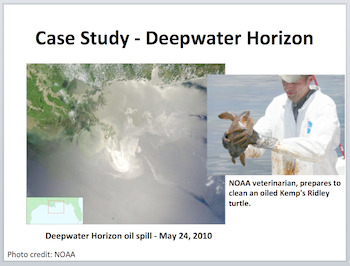 Oil Spills and the Damage They Inflict - PowerPoint Inquiry Lesson