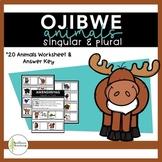 Ojibwe Animals - Singular & Plural