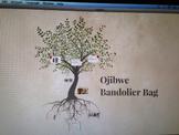 Ojibwe Bandolier Bag Project