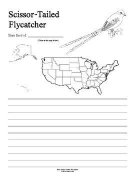 Oklahoma State Bird Notebooking Set (Scissor-Tailed Flycatcher)