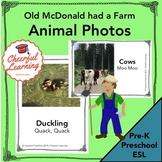 Old McDonald Animal Photos - Preschool, Pre-K, ESL