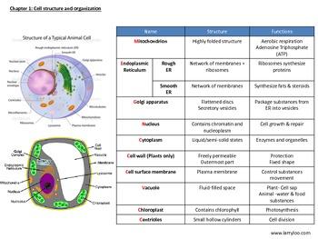 O'levels biology
