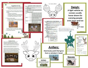 Olive the Other Reindeer Common Core Literature Study and Reindeer Unit