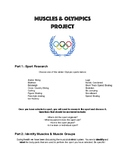 Olympics & Muscle Groups