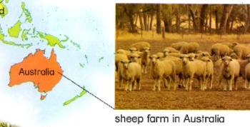 On the Farm- Ben Burkett project-able