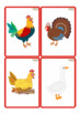 ON THE FARM! Flashcards BUNDLE - Vocabulary cards / Picture Cards