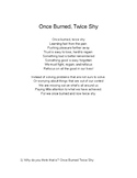 Once Burn, Twice Shy