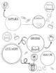 Mind Map Visual Syllabus [PowerPoint, PDF, Pages & Keynote] High School
