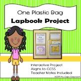 One Plastic Bag Book Companion 3rd & 4th Grade