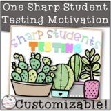 One Sharp Student- Testing Motivation Slip