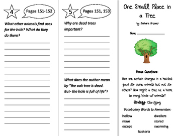 One Small Place in a Tree Trifold - Imagine It 3rd Grade Unit 2 Week 1