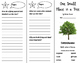 One Small Place in a Tree Trifold - Storytown 3rd Grade Unit 3 Week 4