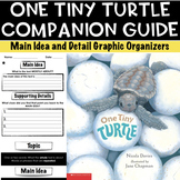 One Tiny Turtle Companion Guide | Main Idea and Detail |