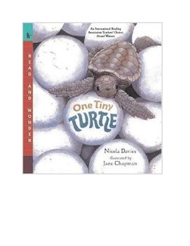 One Tiny Turtle Reading Groups