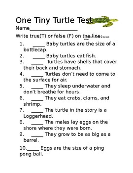 One Tiny Turtle Test