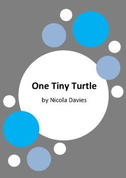 One Tiny Turtle by Nicola Davies - Loggerhead Turtles - 9 Worksheets