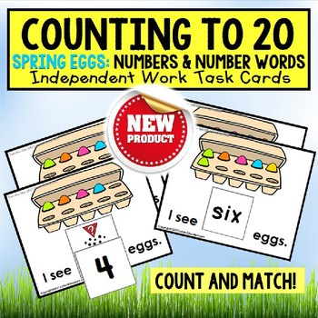One To One Correspondence Count To 20 SPRING EGG Task Card