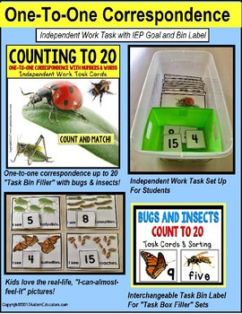 """One To One Correspondence To 20 TASK CARDS BUGS AND INSECTS """"Task Box Filler"""""""
