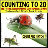 One To One Correspondence To 20 TASK CARDS BUGS AND INSECT
