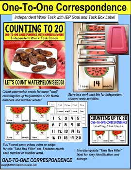 """One To One Correspondence WATERMELON SEEDS Counting TASK CARDS """"Task Box Filler"""""""