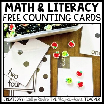 Counting Sensory Bin Cards