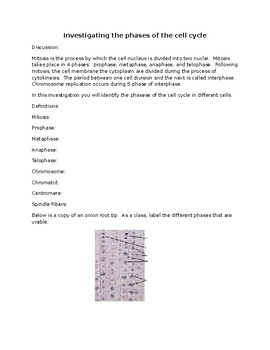 Mitosis Lab Worksheets Teaching Resources Teachers Pay Teachers