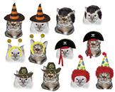 Online ESL - Halloween Cat Costume Activity Reward Prop -