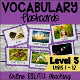 Online ESL Vocabulary Prop Cards (VipKid Level 5)