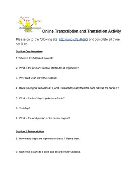 Online Transcription and Translation Activity