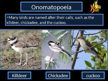 Onomatopoeia Power Point