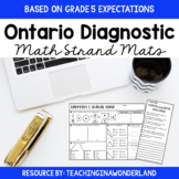 Ontario Diagnostic Math Strand Mats {Based on Grade 5 Expectations}