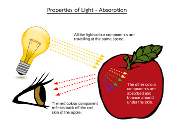 Ontario Science and Technology Grade 4 Unit - Light and Sound