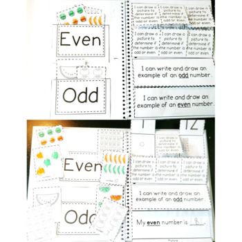 Odd & Even Equal Groups: 2.OA.C.3 Common Core Math