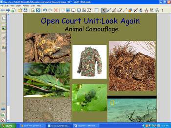 Open Court SMARTBoard Notebook Lesson How To Hide an Octopus