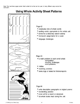 Open-Ended Activities to Use with Books About Whales