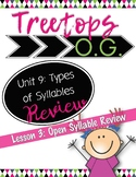 Open Syllable Review: Orton Gillingham Lesson