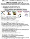 Operant Conditioning Schedules of Reinforcement Worksheet