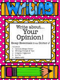 Opinion Essay Graphic Organizer & Rubric Common Core Aligned