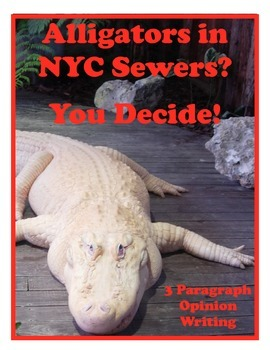Opinion Writing - Alligators in NYC Sewers?    (3 Paragrap