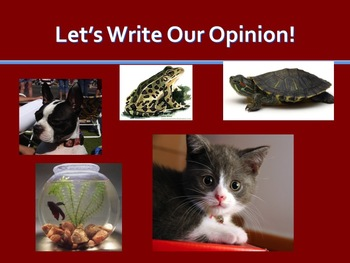 Opinion Writing - Favorite Pet - Powerpoint