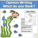 Opinion Writing Scuba Diving