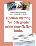 Opinion Writing for 5th grade using non-fiction texts. Wild Pets.